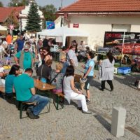 Představení solárního vařiče a grilu: Svatováclavské slavnosti v Dolních Břežanech u Prahy