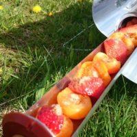 Zapečené meruňky a jahody s javorovým sirupem, skořicí a ořechy